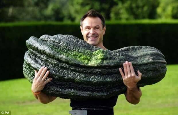 Büyüdükçe Büyümüş Çok Büyük Sebzeler